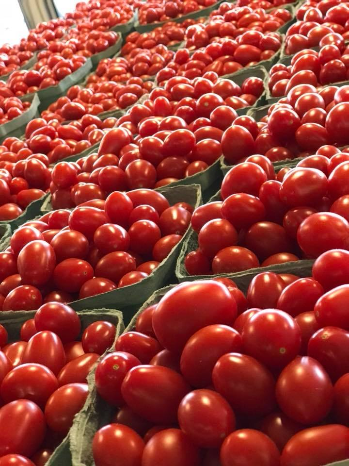 Cherry tomatoes from Keil's Produce and Greenhouse, in Swanton, OH.