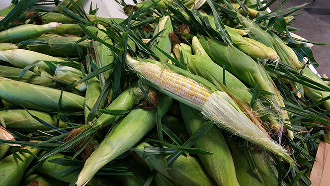 Fresh from our fields, corn on the cob from Keil's Produce and Greenhouse in Swanton, OH.